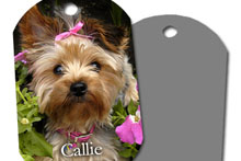 Photo Gift Dog Tags